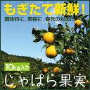 【ふるさと納税】【11月下旬から発送】じゃばら果実(10キロ)