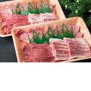 【ふるさと納税】【肉質日本一!】鳥取和牛 特上焼肉セット