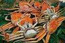 【ふるさと納税】046 鳥取県産 ボイル親がに かに カニ 蟹 せこがに セコガニ ゆで 海産物 シーフード...