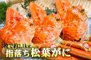 【ふるさと納税】【B-11】「きなんせ岩美」推薦!訳あり指落...