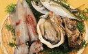 【ふるさと納税】【E-2】おまかせ魚介セット