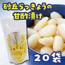 【ふるさと納税】砂丘らっきょうの甘酢漬け(20袋)