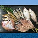 【ふるさと納税】日本海産手作り干物セット(通年)