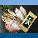 【ふるさと納税】日本海の干物と昆布じめ丼セット(通年)