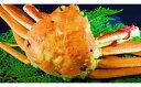 【ふるさと納税】OM-13 ブランドタグ付 高級ボイル松葉ガニ(特大1kg以上)【発送11月〜】...