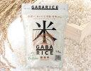 ショッピング無洗米 【ふるさと納税】AS-12 栄養満点!GABAライス(無洗米)3kg