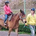【ふるさと納税】539.親子で焼肉バイキングと引馬乗馬体験