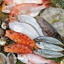 【ふるさと納税】423.浜田の旬のおすすめセット(鮮魚)