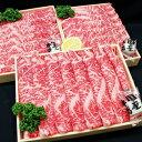 【ふるさと納税】D-245 牛肉ロースすきしゃぶ用 1.05kg