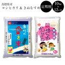 【ふるさと納税】BG無洗米[定期便]きぬコシ 10kg/12ヵ月 米 無洗米 定期 島根県