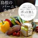 【ふるさと納税】 バーニャカウダ セット 野菜 ソースのセッ...