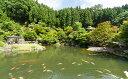 【ふるさと納税】回遊式日本庭園「石照庭園」お食事付きペアチケ...