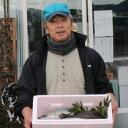 【ふるさと納税】うみさち セット 魚 鮮魚 詰め合わせ セッ...