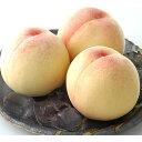 【ふるさと納税】岡山白桃 約1.0kg(4〜5玉) 【果物・...