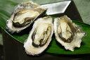 【ふるさと納税】[1-14]殻付き牡蠣