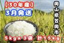 【ふるさと納税】R30-03 30年産「笠岡ふるさと米」15kg(3月発送)