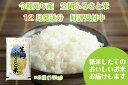 R1-12 2019年産新米「笠岡ふるさと米」15kg(12...