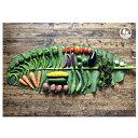 【ふるさと納税】瀬戸内産 旬の野菜セット 【野菜・詰合せ】