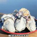 【ふるさと納税】岡山虫明産(瀬戸内市) 牡蠣  半斗缶 殻付...