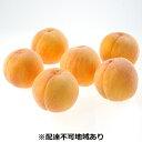 【ふるさと納税】●先行予約受付●ご家庭用 おかやまの黄金桃 約1.5kg 【果物・もも・桃・フルーツ...