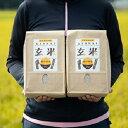 ショッピング玄米 【ふるさと納税】【新米】岡山県奨励品種「 アケボノ 」 2kg×2袋 ( 玄米 食用 ) 【お米・玄米】 お届け:2020年11月下旬〜2021年1月中旬