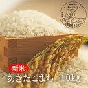 【ふるさと納税】<令和3年産・新米>G32おおがや米 あきたこまち 白米10kg
