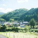 【ふるさと納税】<T5 西粟倉村内・空き家の巡回サービス>