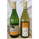 【ふるさと納税】MA1501 TOMOEワイン2本セットA