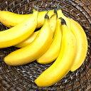 【ふるさと納税】ヒロシマPEACEバナナ 6〜10本(1本100〜150g) 【果物詰合せ・果物・詰...