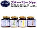 【ふるさと納税】ブルーベリー ジャム N-100A (てん菜...