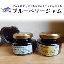 【ふるさと納税】広島県神石高原町産 ブルーベリージャム 2個...
