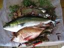 30A-013【ふるさと納税】山口県漁協大海の海の幸セット ...