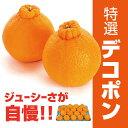 デコポン 1箱5kg(18玉〜20玉)◆