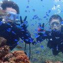 【ふるさと納税】KNP02 徳島最南端の海で体験ダイビング!...