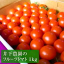 【ふるさと納税】井下農園のフルーツトマト 1kg 【野菜類/...
