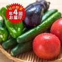 【ふるさと納税】旬の野菜詰合せ(年間4回定期便) 【定期便・...