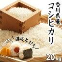 【ふるさと納税】令和元年産 新米 香川県産「コシヒカリ」 2...