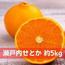 【ふるさと納税】瀬戸内せとか 約5kg 【果物類 柑橘類 フルーツ みかん ミカン】 お届け:2022年2月上旬〜3月中旬