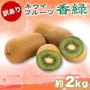 【ふるさと納税】訳あり 香緑キウイ 2kg 訳あり キウイフルーツ 香緑