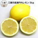 【ふるさと納税】三豊市産瀬戸内レモン約5kg(30〜40個前...