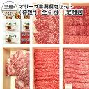 【ふるさと納税】オリーブ牛満喫肉セット(奇数月 全6回)【定...