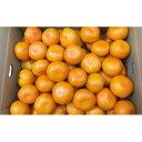 【ふるさと納税】小豆島みかん 10kg 【果物類・柑橘類・みかん・フルーツ】 お届け:2020年11月下旬~2020年12月中旬