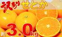 【ふるさと納税】663 訳ありせとか 約3.0kg