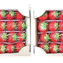 【ふるさと納税】【1月~順次発送】さぬきひめ苺 つる付き約400g×2箱 【果物類・いちご・苺・イチゴ】 お届け:2020年1月中旬~4月下旬
