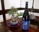【ふるさと納税】金陵純米吟醸濃藍(提供:西野金陵株式会社)