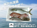 【ふるさと納税】(地元漁師厳選!魚介類詰め合わせ)瀬戸内 季...