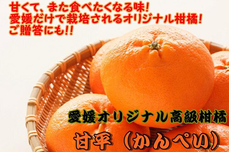【ふるさと納税】美味!!愛媛県だけのオリジナル高級柑橘「甘平」