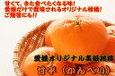 【ふるさと納税】美味!!愛媛県だけのオリジナル高級柑橘「甘平」(ご贈答にも最適!)
