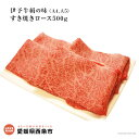 【ふるさと納税】<伊予牛絹の味(A4,A5)すき焼きロース500g(冷凍)> 250g×2 黒毛和牛 すきやき スキヤキ ※1か月以内に出荷します。【冷凍】