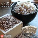 【ふるさと納税】<もち麦(愛媛県産ダイシモチ)2.5kg オ...